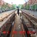 打樁泥漿處理機廠家_建筑打樁污泥脫水設備_打樁污泥壓濾脫水機