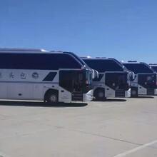 内蒙古旅游大巴包车价格图片