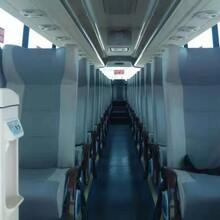 乌海旅游大巴服务图片