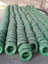 厂家供应碳素磷化钢丝土工格栅钢丝图片