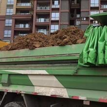 芜湖承接土方运输公司图片