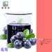 加州濃縮果汁廠進口種植藍莓濃縮汁6倍濃縮25.25KG/桶現貨供應