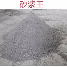 厂家直销砂浆王砂浆王中王液体砂浆王水泥塑化剂砂浆精图片
