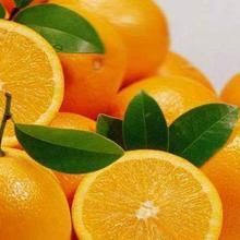 東莞水果批發市場贛南臍橙代購代銷