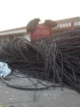 皇姑区废旧电缆回收价格行情皇姑区400米电缆线回收图片
