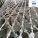 防攀爬網圍欄-監獄鐵絲網