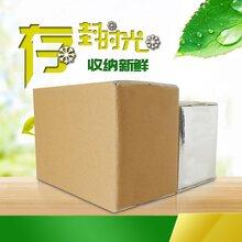 志力冷藏箱_医药冷链运输专用保温箱_品质安全可靠图片