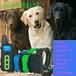JoysfeelRDT1500C超遠距離遙控級防水可充電省電一拖三寵物訓狗器止吠器