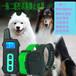 JoysfeelRDT800B遙控IP76級防水可充電大屏幕LCD顯示三合一一拖二寵物訓狗器止吠器