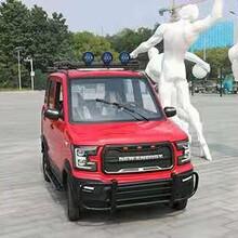 新能源电动汽车成人四轮车全封闭两用纯电动家用女性代步电瓶轿车图片