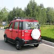 新款油电混合两用电动汽车铁壳电动四轮车图片