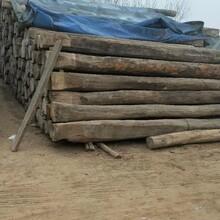 常年回收老榆木梁多少錢一平方圖片