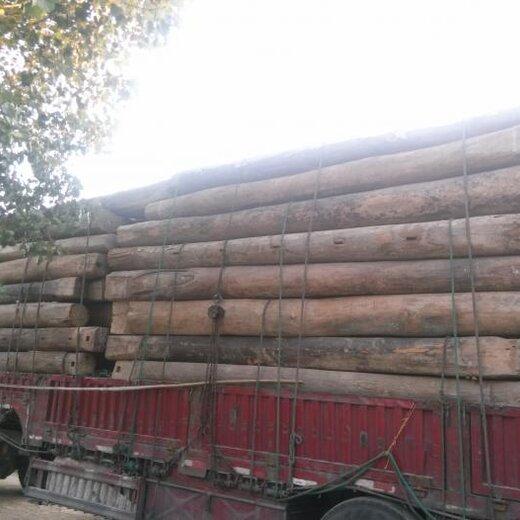 銷售老榆木產地貨源