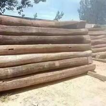 臨沂河東區回收老榆木廠家圖片
