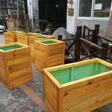 晋城景观花箱图片