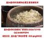 云南剩饭剩菜或者泔水怎么发酵养鸡养猪