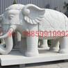 雕刻石雕大象室外大型大象石雕動物石雕擺件