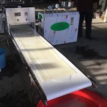 水浴式涼皮機全自動大拉皮機川粉機產地貨源圖片