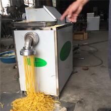 畅销十年玉米面条机20年品质杂粮面条机钢丝面机生产批发图片