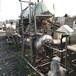陽江大量回收二手殺菌鍋