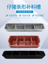 復合樹脂四孔仔豬補料槽母豬產床小豬料槽鍍鋅長條食槽鋼板食槽圖片