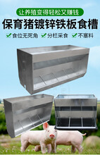 铁板单面食槽保育床双面料槽兽用自动采食槽下料器保育猪食槽图片