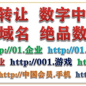 絕品數字中文域名的含義