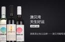 澳慕國際酒業(AOMUWINES)澳大利亞進口葡萄酒招商城市合伙人圖片