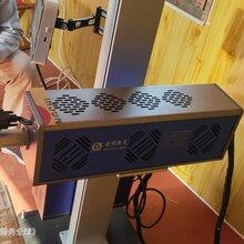 西瓜激光喷码机用于西瓜品牌的信息喷码、雕刻、打码图片