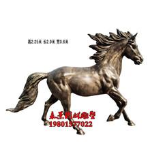 玻璃钢马雕塑仿铜动物马雕塑图片图片