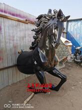 新品马头雕塑玻璃钢仿铜马雕塑图片大全图片