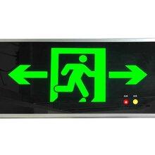 泰安消防公司專用智能疏散指示系統燈具圖片