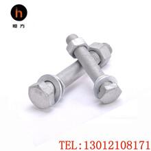 熱浸鋅外六角螺栓M16100鐵塔電力專用8.8級熱鍍鋅螺栓圖片