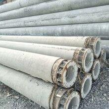 山西忻州电杆生产厂家230-15米水泥电线杆报价格图片