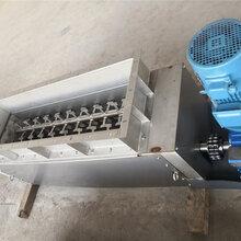 金三利1200型污泥切条机不锈钢切丝刀图片