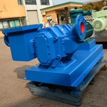 污泥輸送轉子泵圖片