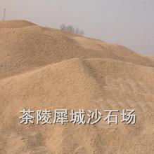 株洲大量優質河砂、建筑河砂極速發貨圖片
