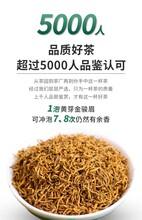 東莞醉茗尖武夷金駿眉紅茶供應商圖片