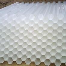 滎陽六角蜂窩填料供貨商圖片