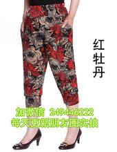特价处理女装休闲裤2020新款女式长裤广东惠州进货渠道