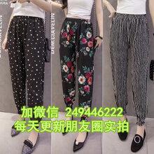 特价处理女装休闲裤2020新款女式长裤甘肃张掖服装城
