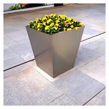 廣西藝術不銹鋼花盆花器定制的價格圖片