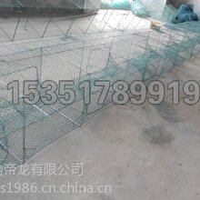 地笼网-地笼网批发-地笼网价格图片