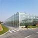 玻璃溫室價格-玻璃溫室骨架材料