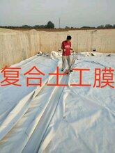 厂家直销复合土工膜两布一膜,一布一膜,复合土工膜厂家图片