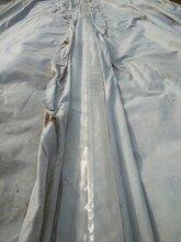 厂家直销复合土工膜两布一膜一布一膜人工湖防渗膜图片