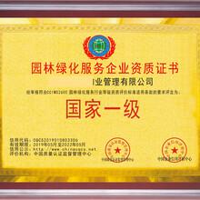 优惠办理林业市政绿化养护服务公司资质证书投标招标可用图片