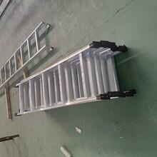 南京斜爬梯厂家直销图片