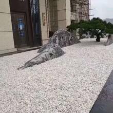 山西泰山石雪浪石厂优游注册平台报价图片
