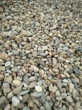 吉林鹅卵石供应商图片